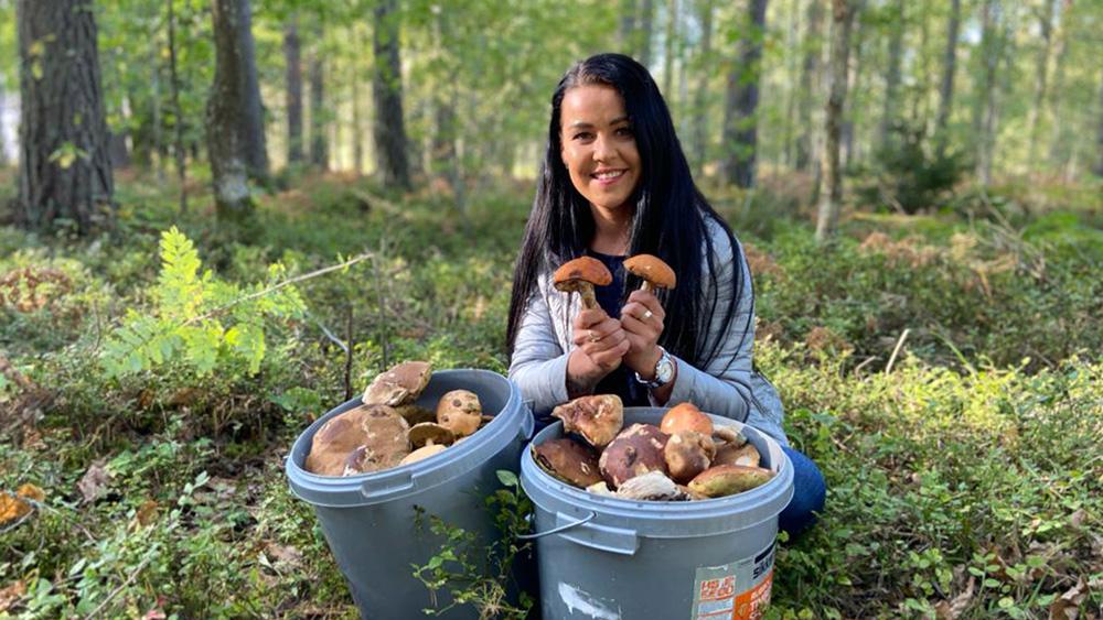 Latvijā bagātīga beku un baraviku raža