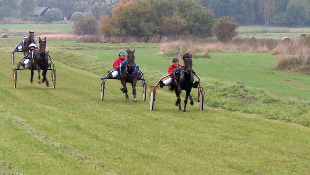 Noslēdzas rikšotāju zirgu sacensību sezona