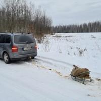 Ragavu vilkšana virvē aiz mašīnas var beigties traģiski