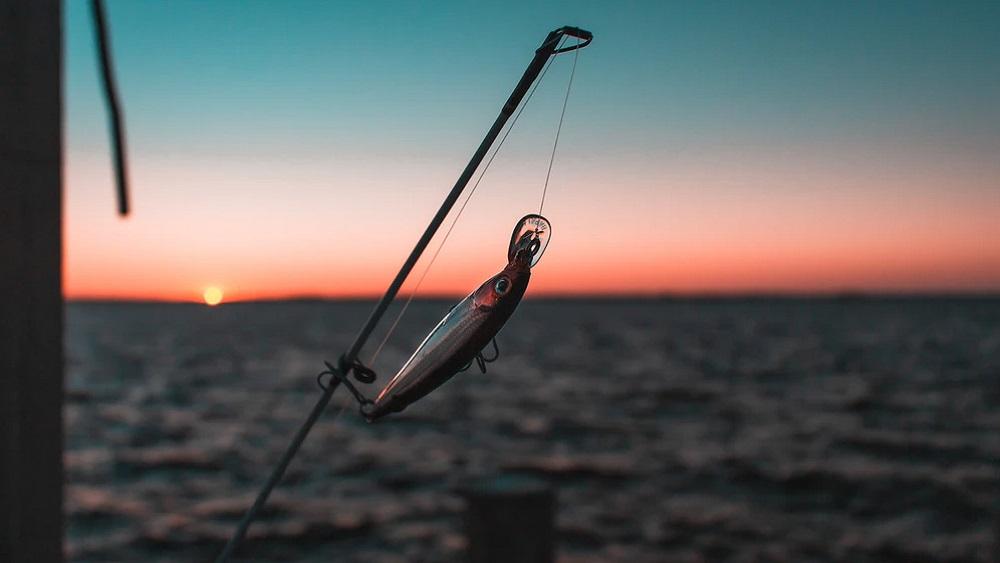 Zivju reids Ventā