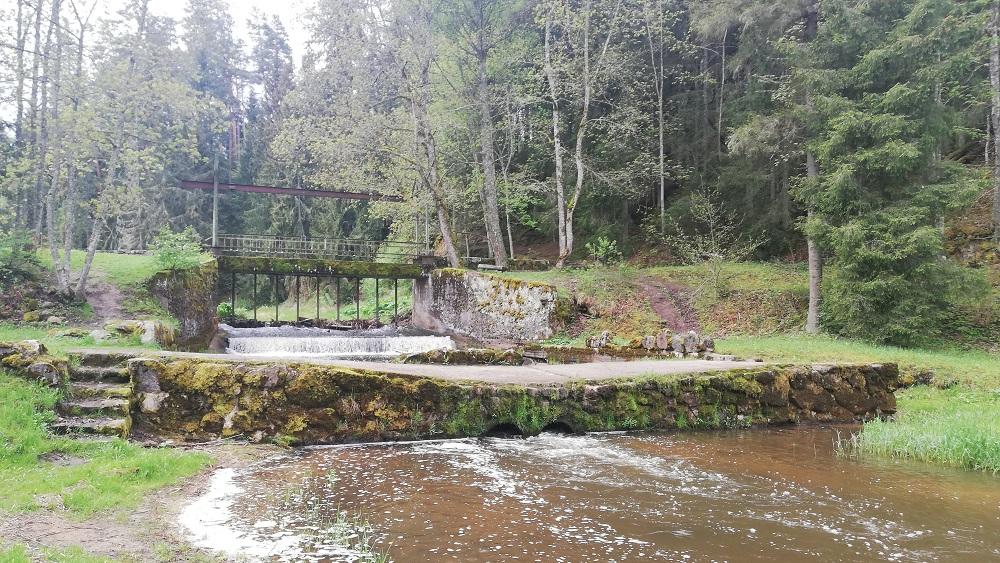 Latvijā nav skaidrs, kā upes atbrīvot no aizsprostiem