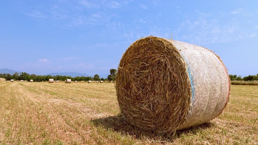 Nepiemērotas ceļu nobrauktuves apgrūtina zemnieku darbu