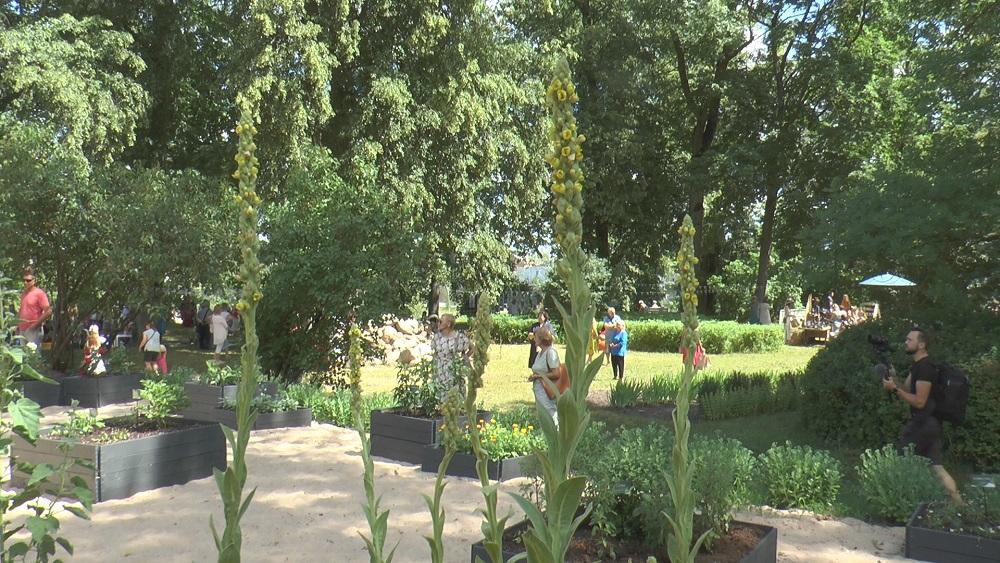 Dobelē  atklāts vēsturiskais ārstniecības augu dārzs