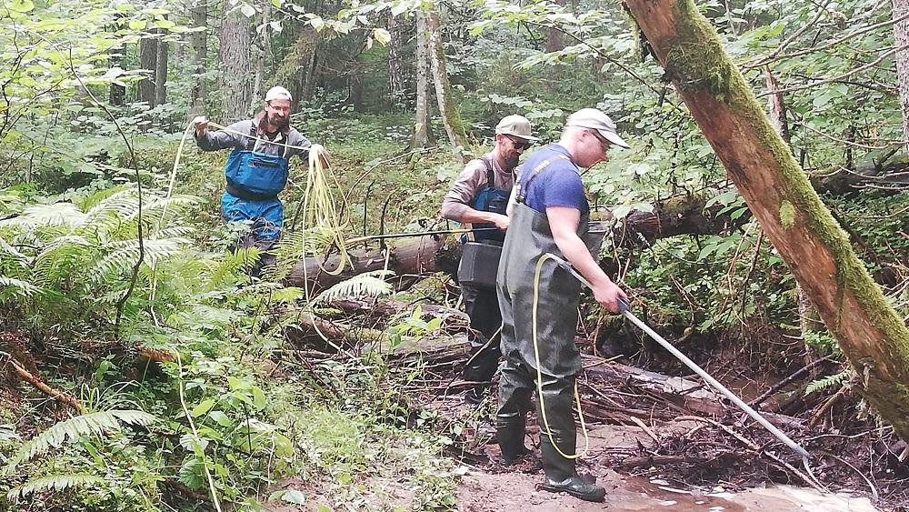 Mazajās upītēs atjaunos foreļu un taimiņu dzīvotnes