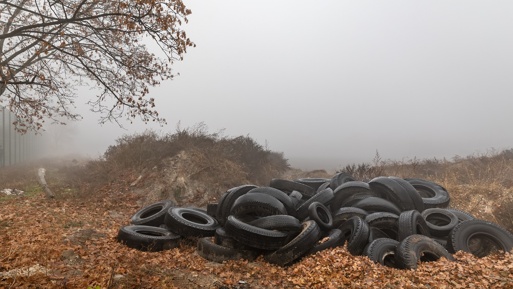60% no mežā izmestajiem atkritumiem - sadzīves, otra daļa - autoriepas, šīferis